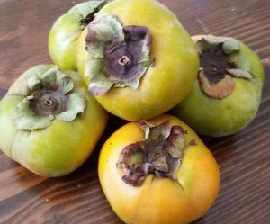 Persimmon Vinaigrette - EatinWithYiaYia.com